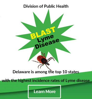 Delaware is among the top 10 states with the highest incidence rates of Lyme disease