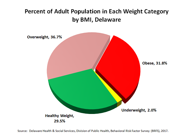 Obesity Prevention Update Delaware Health And Social Services