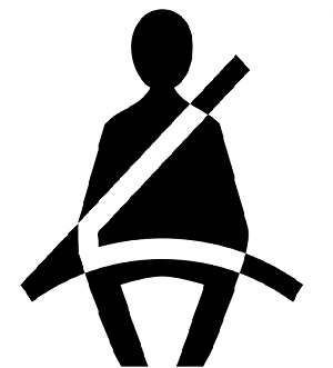 Seatbelt Use 2015 - Delaware Health and Social Services - State of